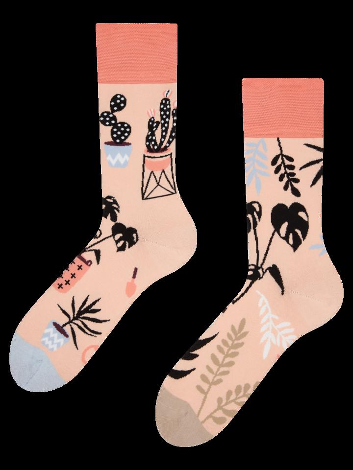 Výjimečný dárek od Dedoles Veselé ponožky Pokojové rostliny