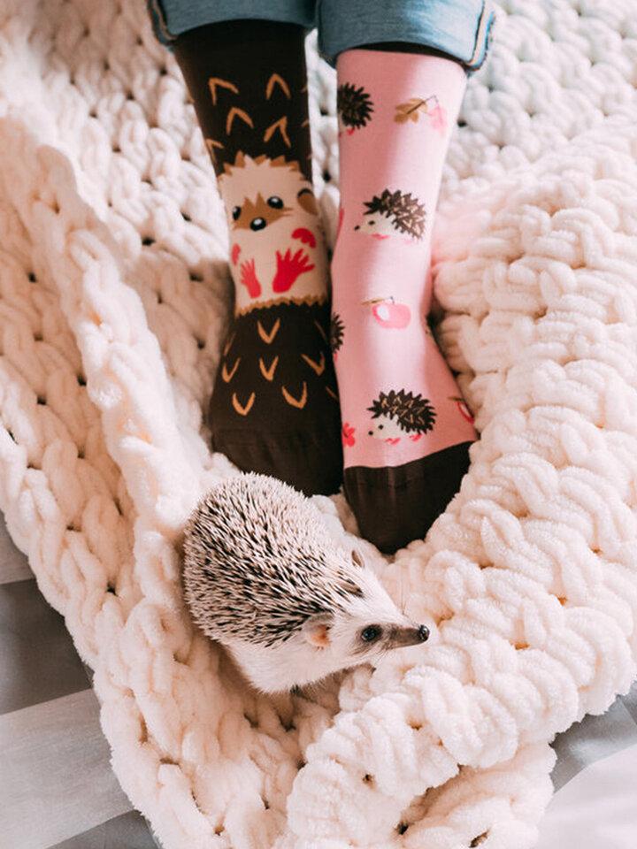Pre dokonalý a originálny outfit Živahne nogavice Ježek