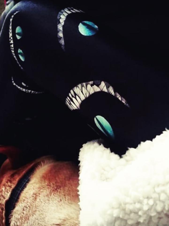 Výpredaj Ženske športne elastične pajkice Mačji nasmeh