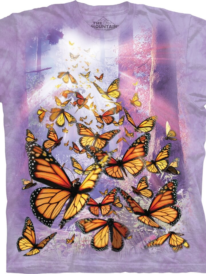 Potěšte se tímto kouskem Dedoles Tričko Motýlí vzestup - dětské