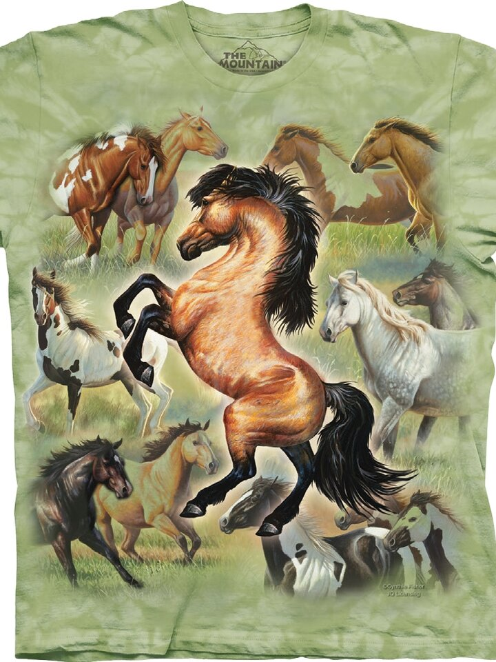 Potešte sa týmto kúskom Dedoles T-shirt Dance of Horses Child