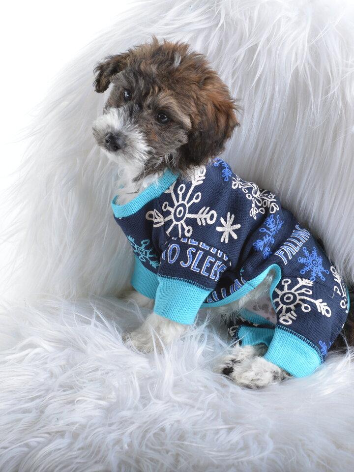 Geschenktipp Blauer Hundeoverall Flocken