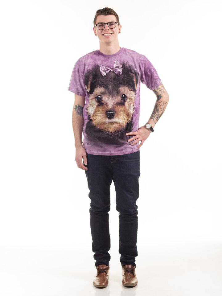 Foto Yorkshire Terrier Puppy