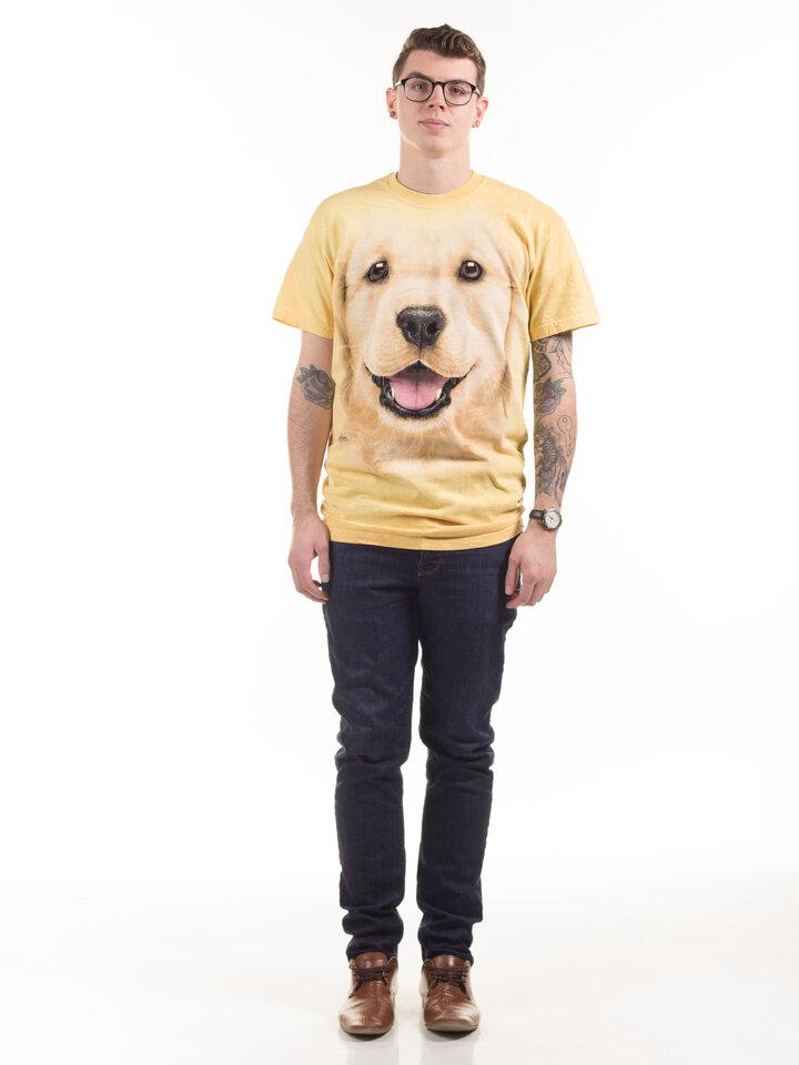Wyprzedaż Golden Retriever Puppy