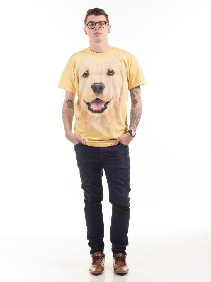 ZNIŻKA Golden Retriever Puppy