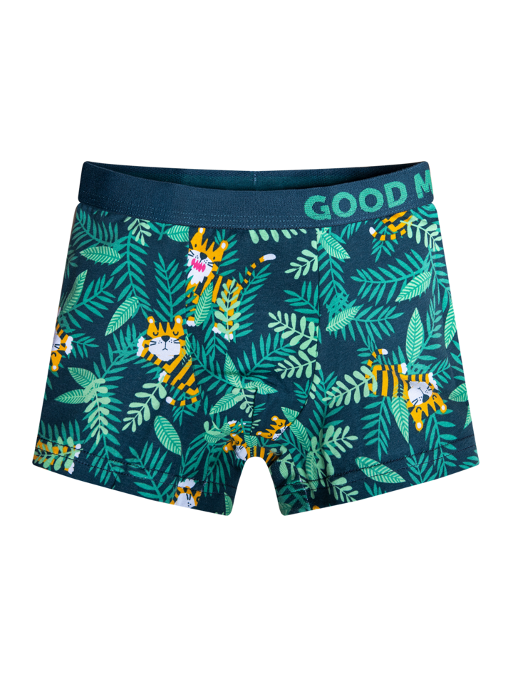 Original gift Boys' Boxers Tiger