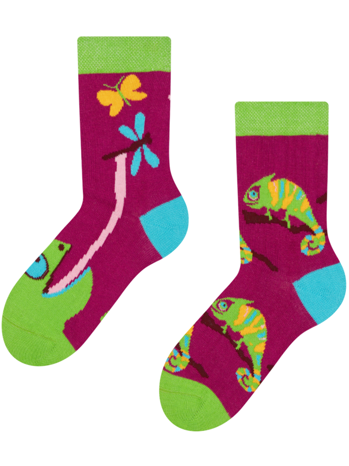 Potešte sa týmto kúskom Dedoles Kids'Socks Chameleon