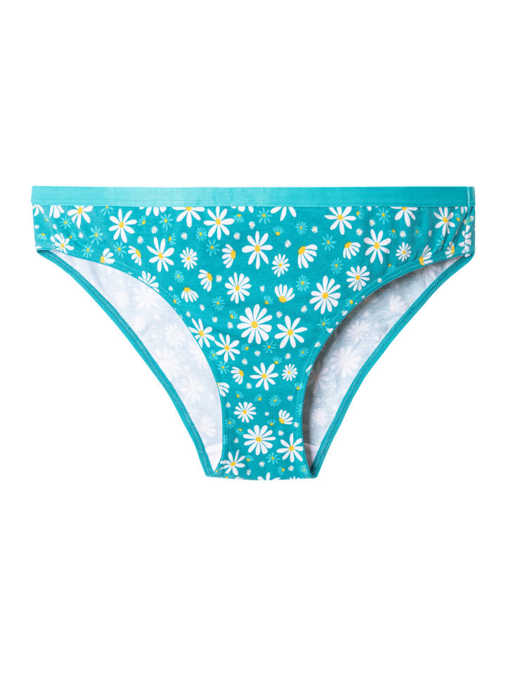 Original gift Women's Briefs Chamomile