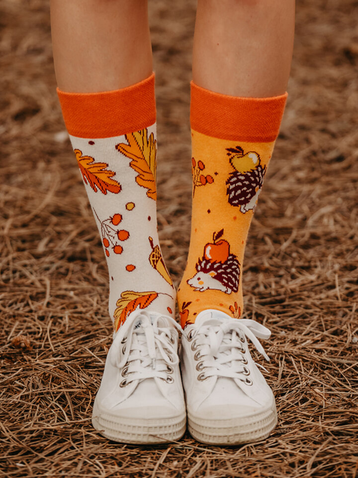 Sale Good Mood Eco Friendly Socks Autumn Hedgehog