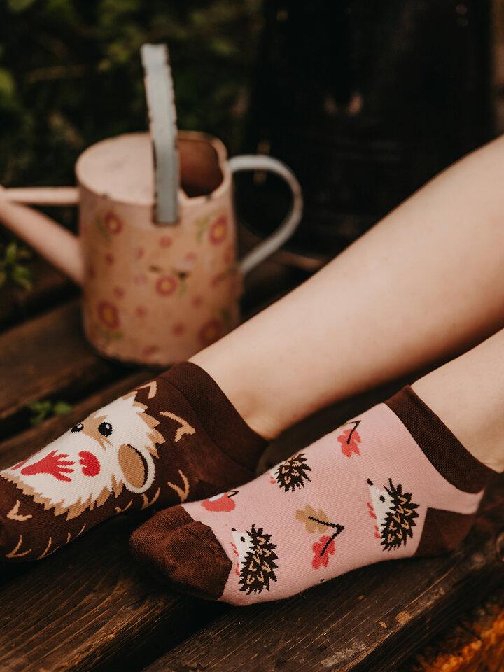 Lifestyle foto Șosete Vesele sub Gleznă Arici
