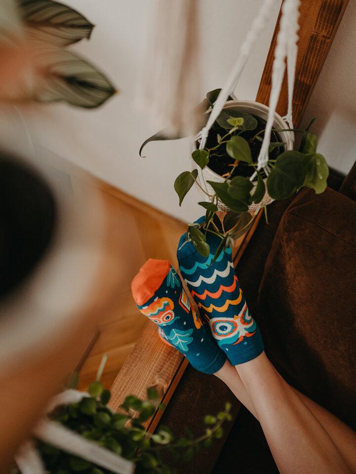 Výpredaj Členkové veselé ponožky Múdra sova