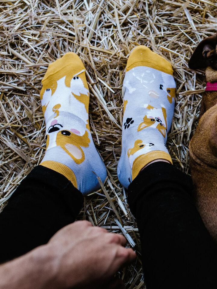 Výprodej Veselé kotníkové ponožky Pes Corgi