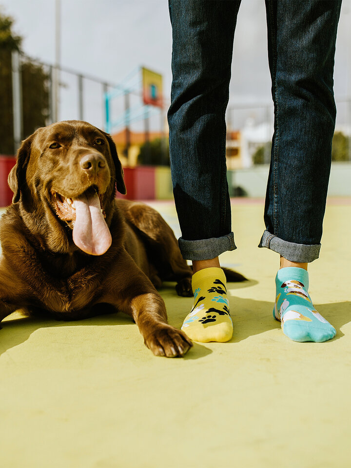 Pre dokonalý a originálny outfit Vrolijke enkelsokken Happy Dog