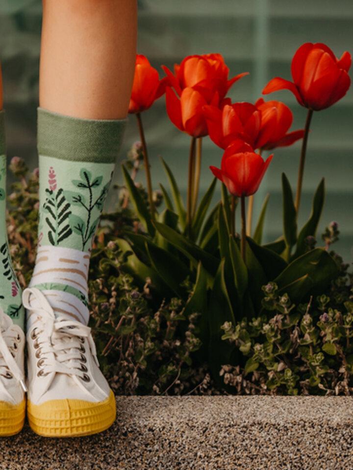Sale Regular Socks Herbs