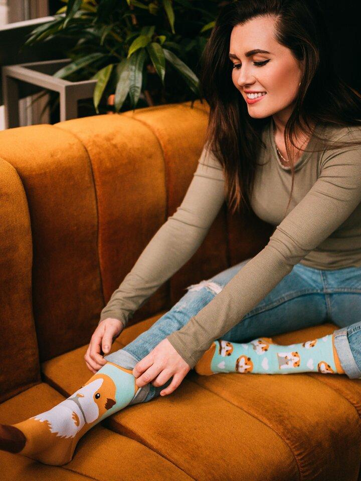 Obrázok produktu Veselé ponožky Morské prasiatko