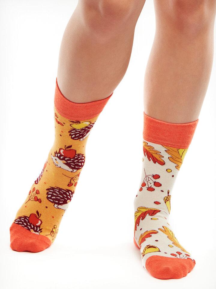 für ein vollkommenes und originelles Outfit Lustige Socken aus recycelter Baumwolle Herbstigel