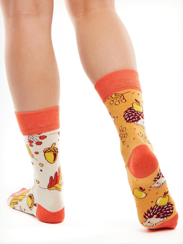 Bereiten Sie sich Freude mit diesem Dedoles-Stück Lustige Socken aus recycelter Baumwolle Herbstigel