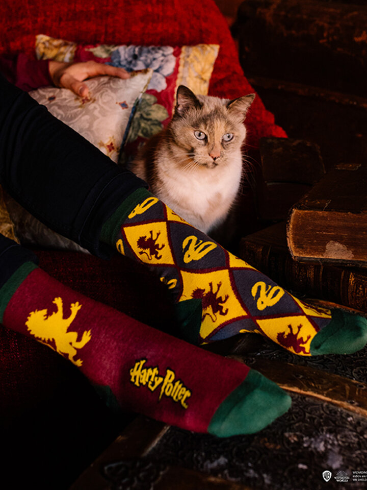 Zľava Vesele nogavice Harry Potter ™ Gryffindor vs. Slytherin