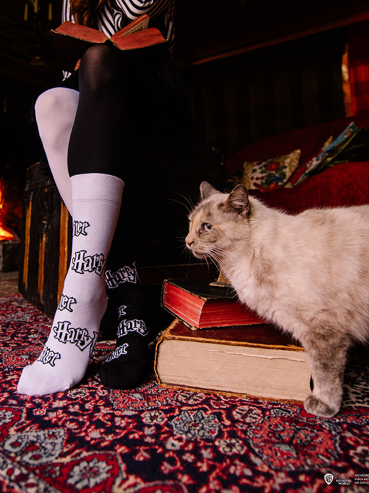 Obrázok produktu Vesele čarape Harry Potter™ Crna i Bijela