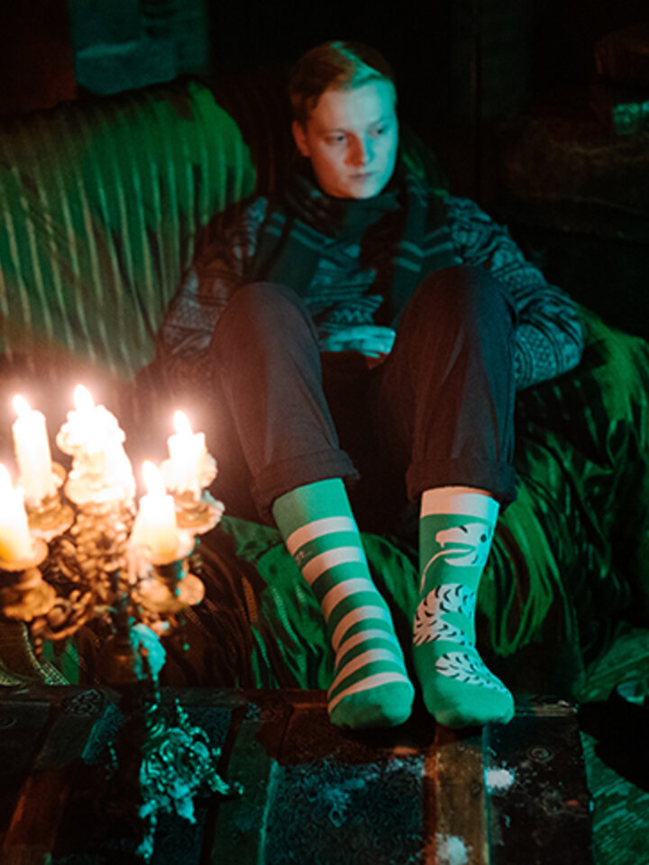 Pre dokonalý a originálny outfit Wesołe skarpetki Harry Potter ™ – Slytherin