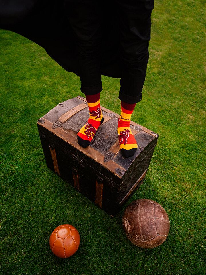 Szerezzen magának örömet ezzel a Dedoles darabbal Vidám zokni Harry Potter ™ - Kviddics