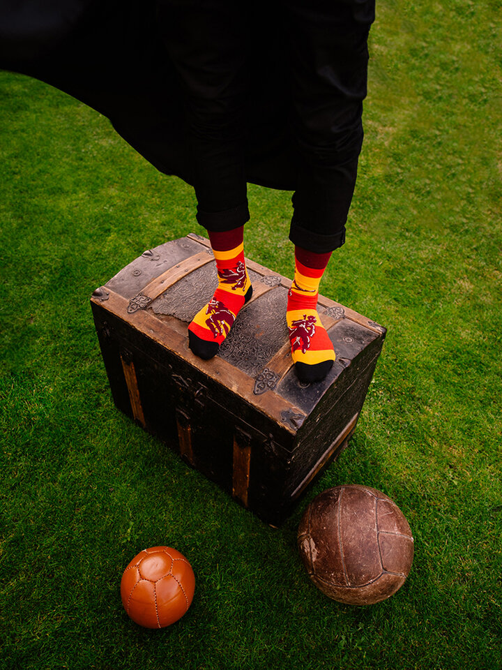 Potešte sa týmto kúskom Dedoles Harry Potter Regular Socks ™ Quidditch