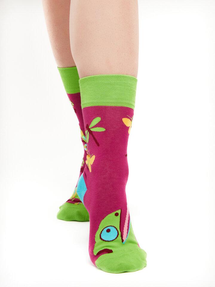 Tip na darček Vrolijke sokken Kameleon