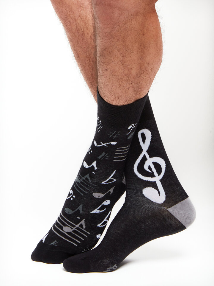 Lifestyle photo Regular Socks Music