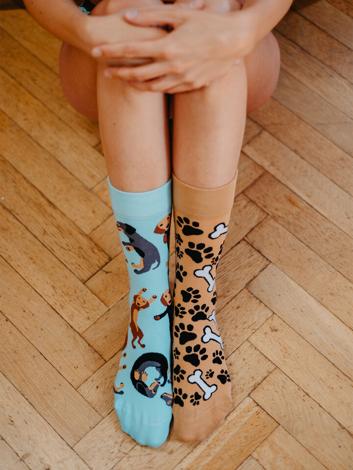 Potešte sa týmto kúskom Dedoles Vrolijke sokken Teckel