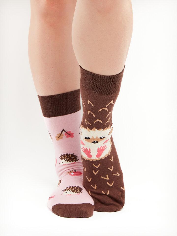 Pre dokonalý a originálny outfit Regular Socks Hedgehog