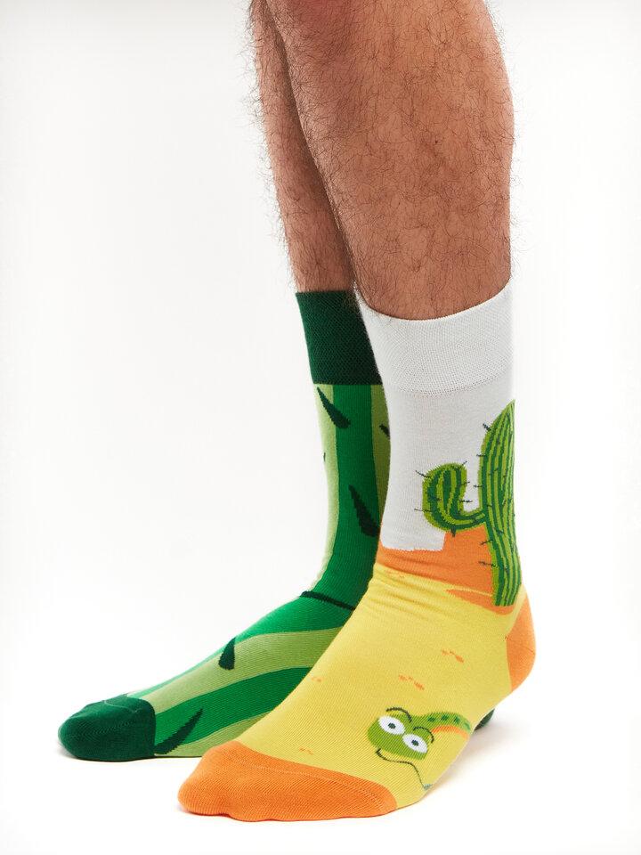 Potešte sa týmto kúskom Dedoles Živahne nogavice Kaktus