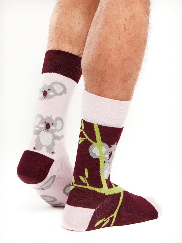 Lifestyle photo Regular Socks Koala