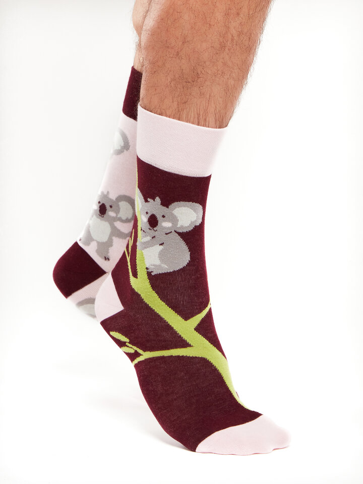 Original gift Regular Socks Koala