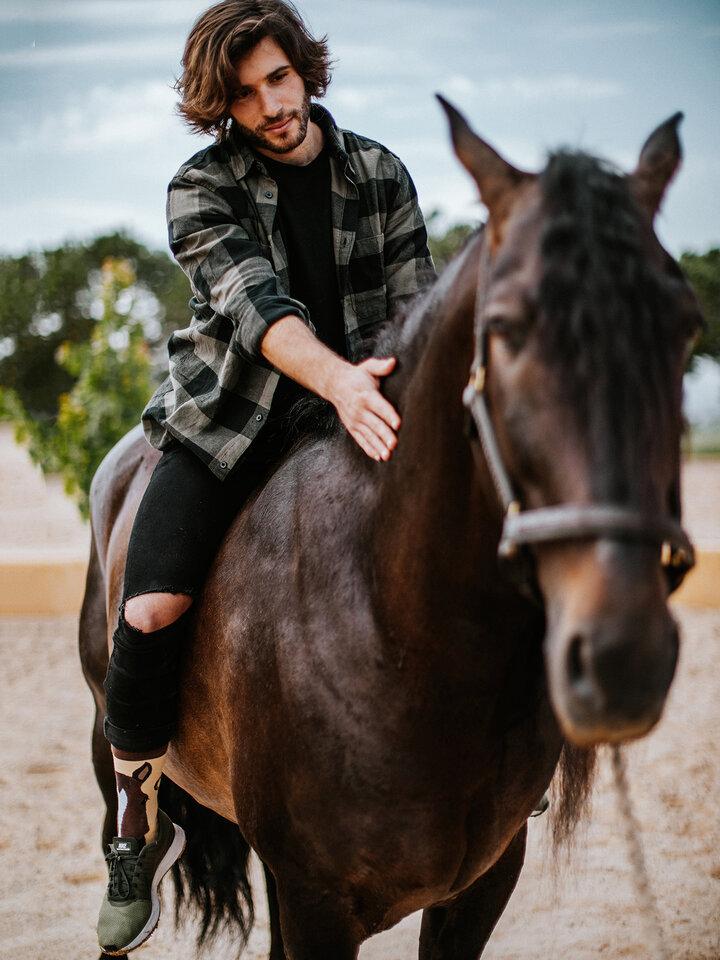 Sale Regular Socks Horses