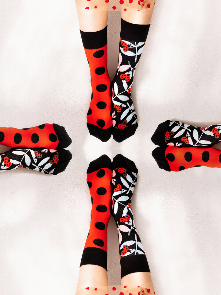 Lifestyle photo Regular Socks Ladybug