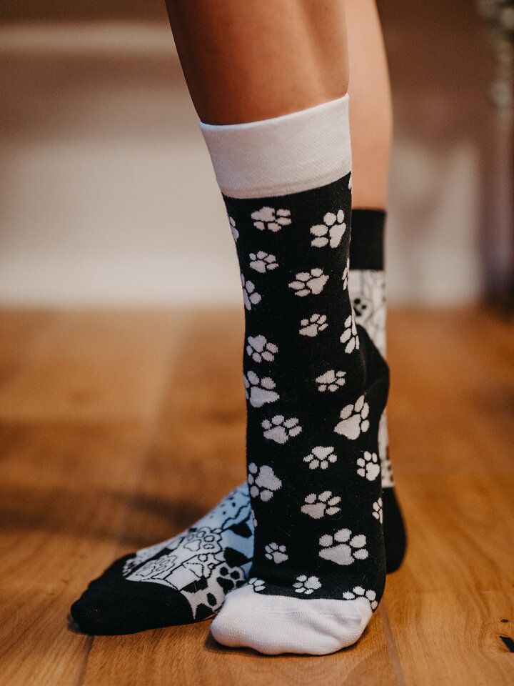 Looking for an original and unusual gift? The gifted person will surely surprise with Regular Socks Cat Paws