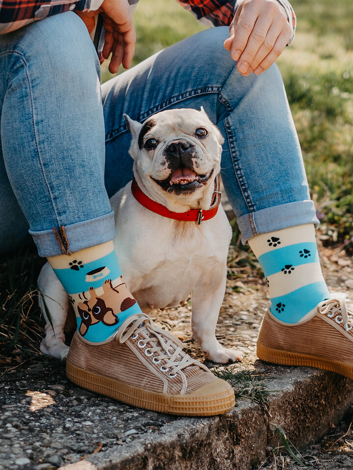 Obrázok produktu Vrolijke sokken Honden en strepen