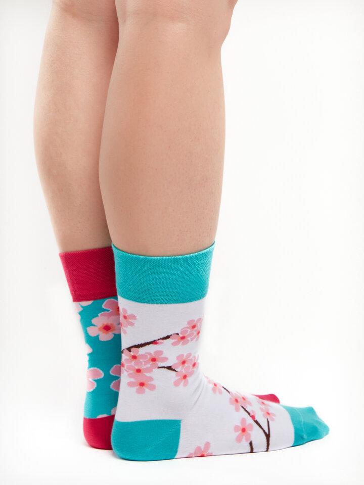 Bereiten Sie sich Freude mit diesem Dedoles-Stück Lustige Socken Sakura