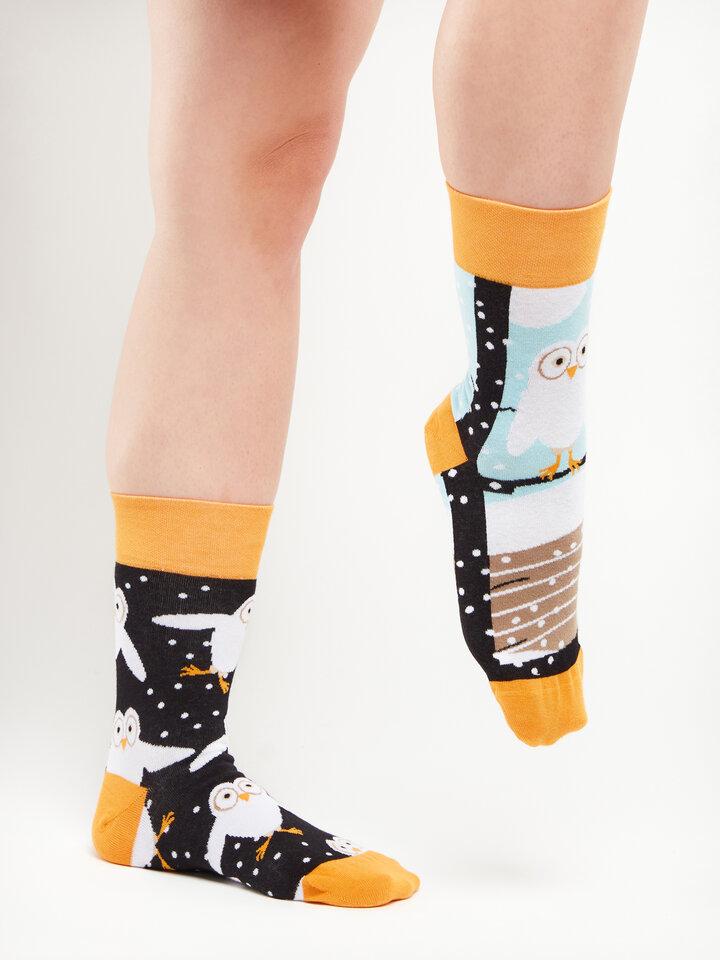 Lifestyle foto Veselé ponožky Sovy