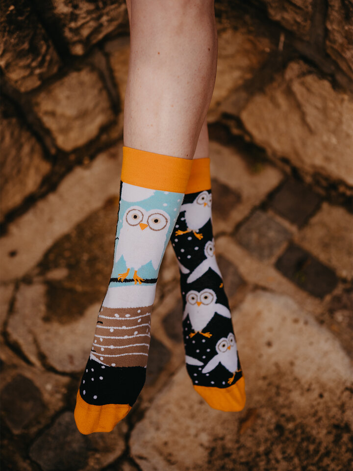 Sale Regular Socks Owls