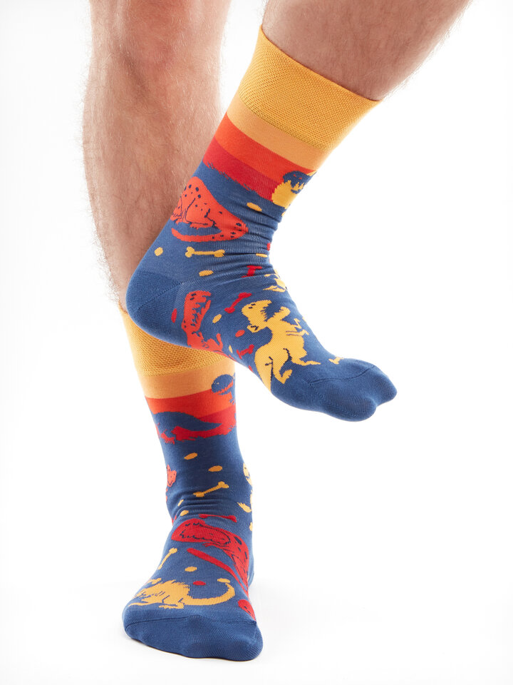 Sale Regular Socks Dinosaur World