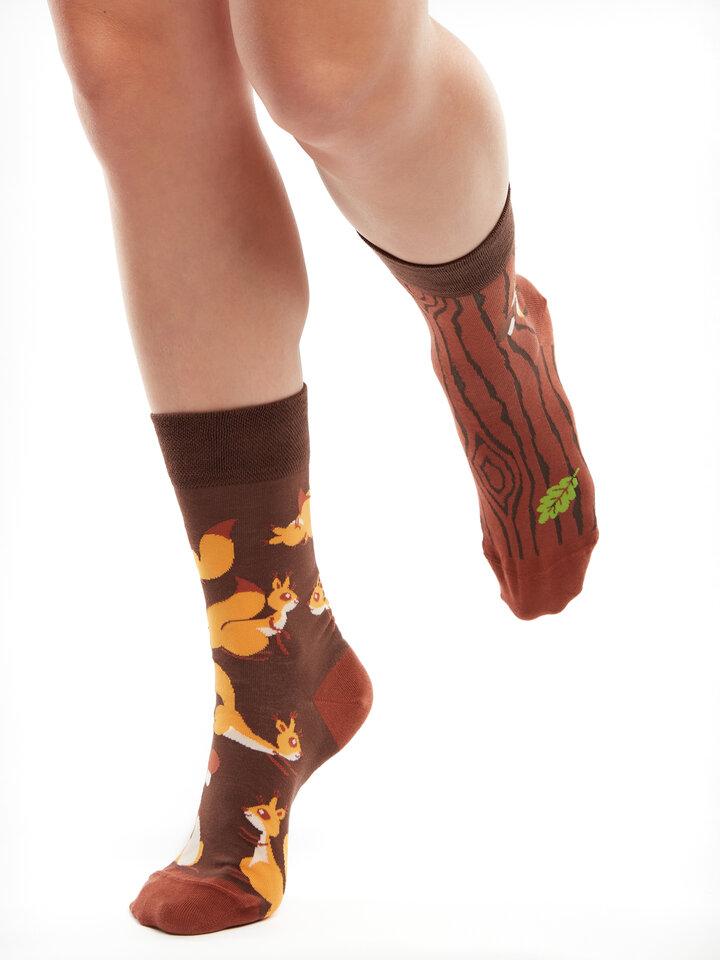für ein vollkommenes und originelles Outfit Lustige Socken Eichhörnchen