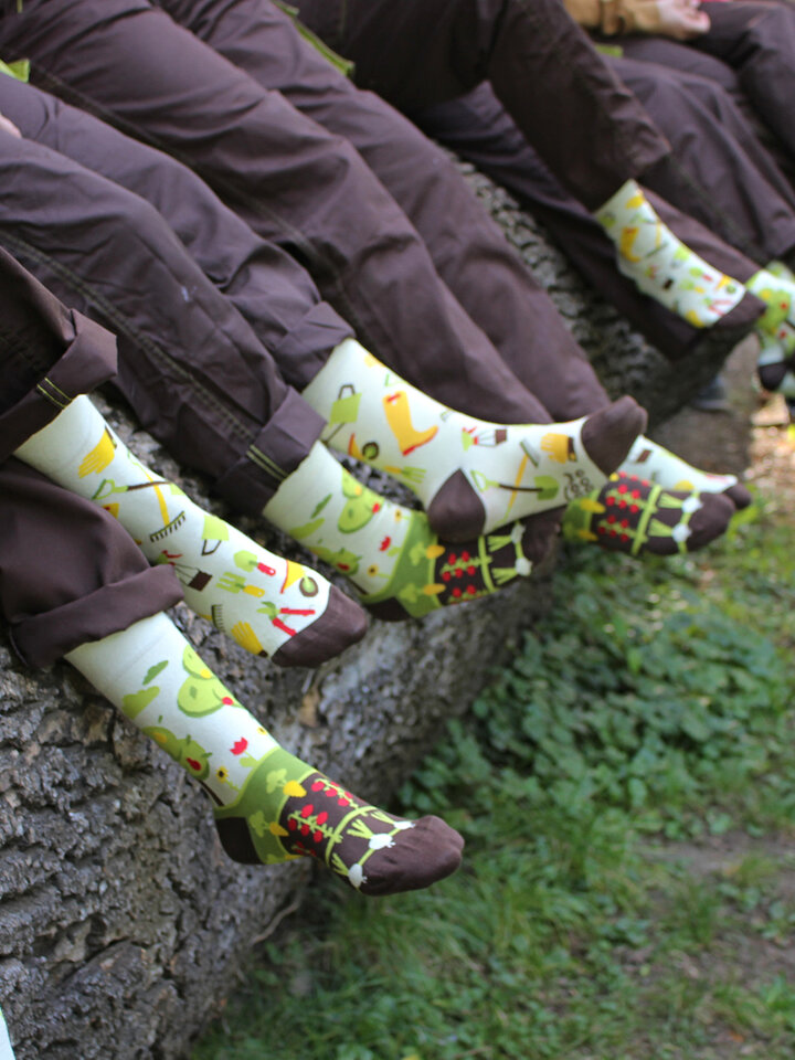 Gift idea Regular Socks Gardening