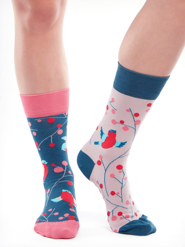 Looking for an original and unusual gift? The gifted person will surely surprise with Bamboo Regular Socks Birds and Rowan