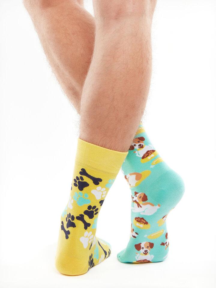 Obrázok produktu Весели чорапи Щастливо куче