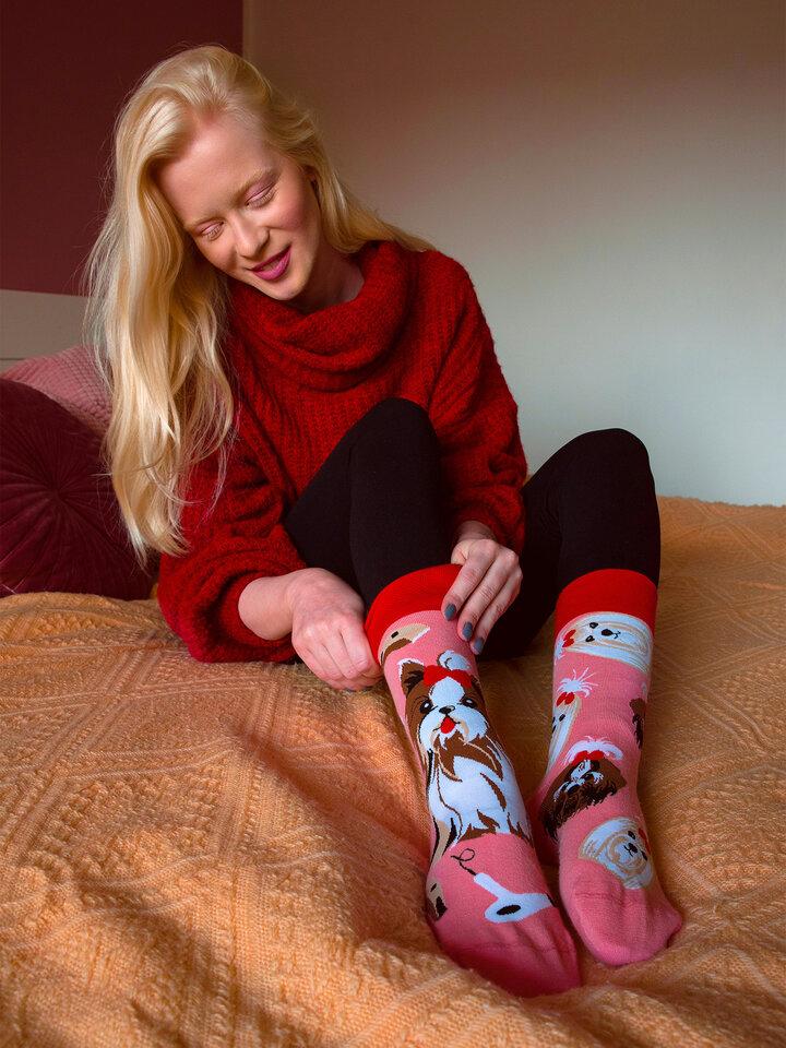 Potešte sa týmto kúskom Dedoles Veselé ponožky Yorkšírsky teriér