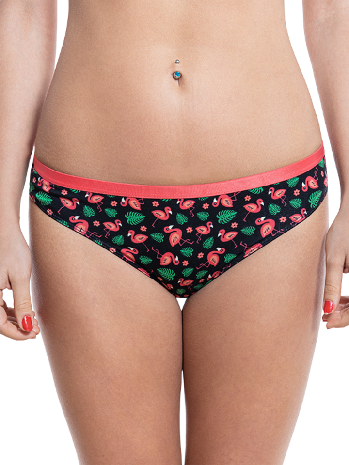 Original gift Women's Briefs Flamingos