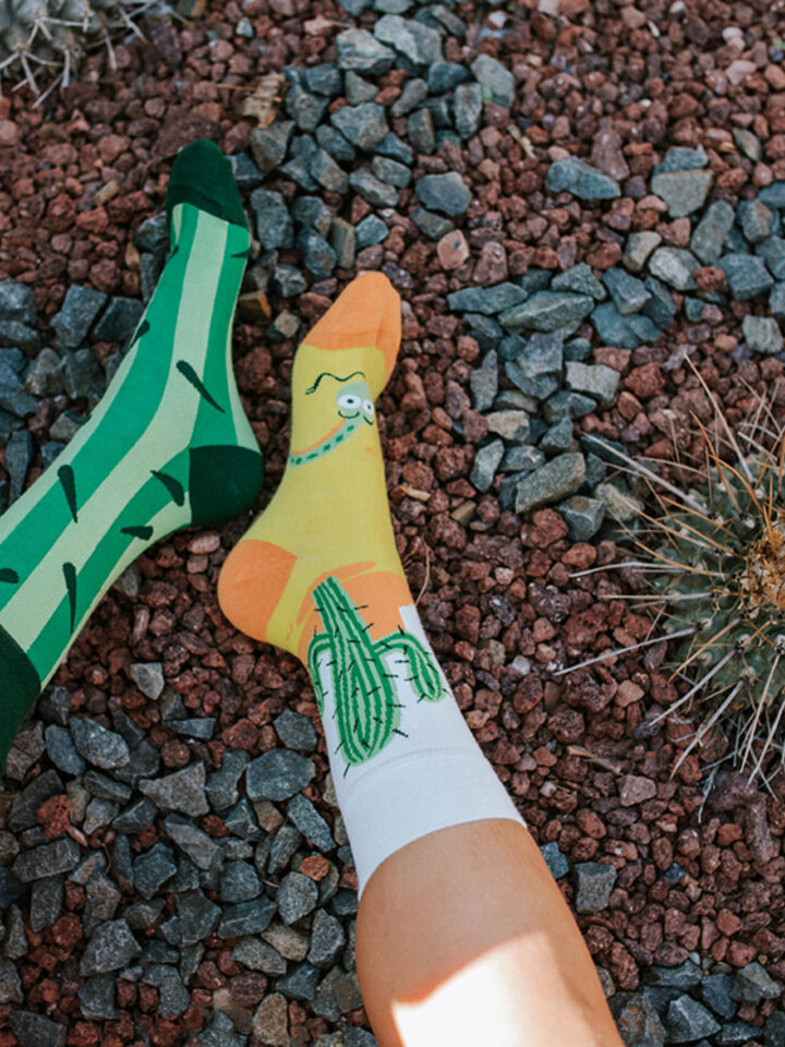 Potešte sa týmto kúskom Dedoles Vrolijke sokken Cactus