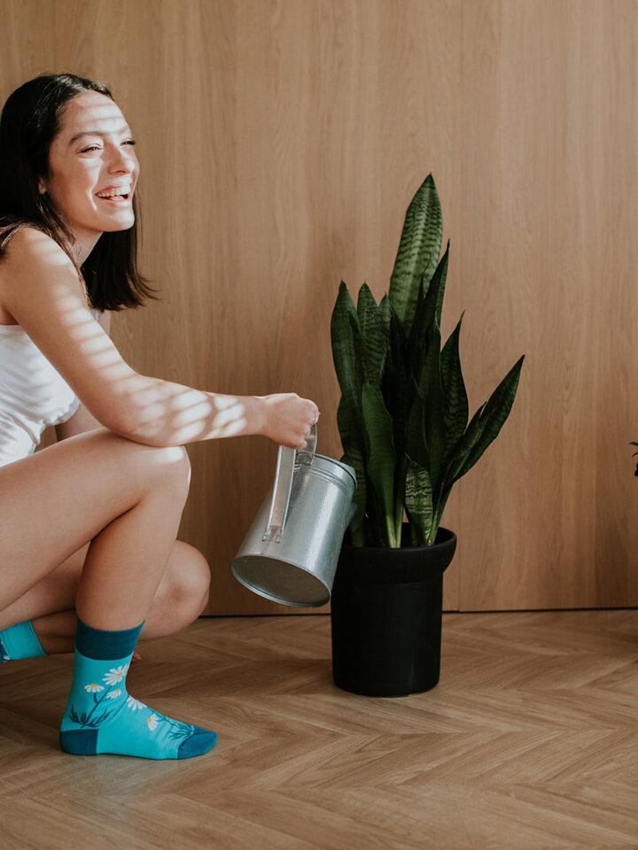 Zľava Vesele nogavice Marjetice