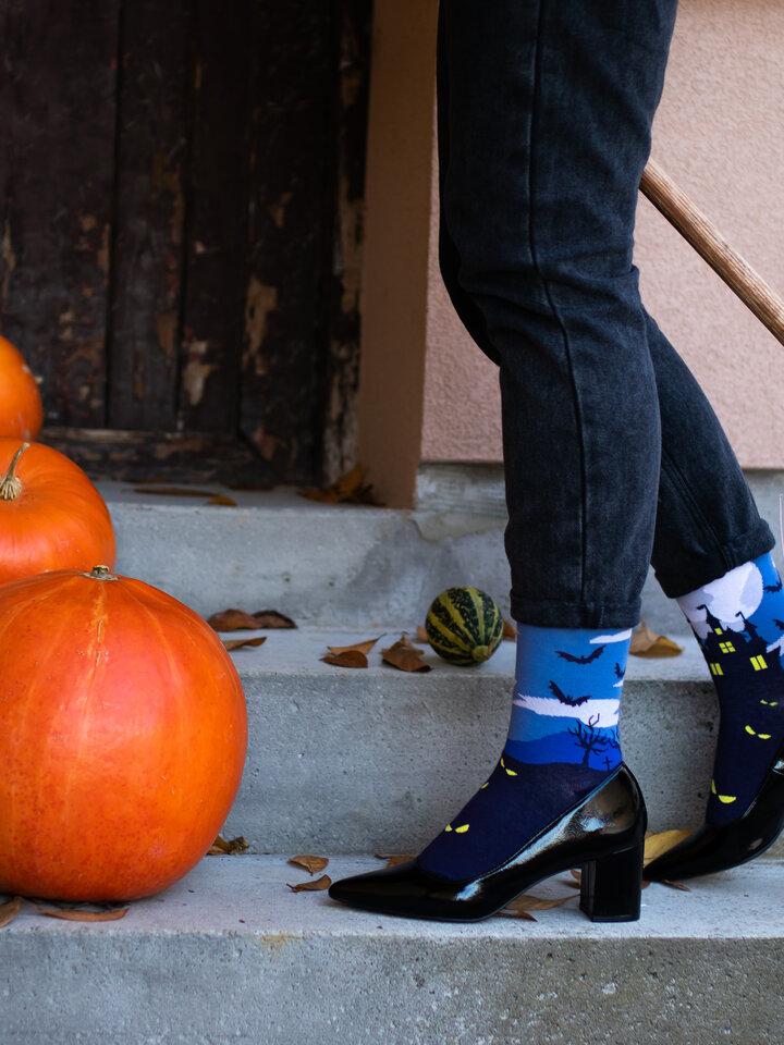 Pre dokonalý a originálny outfit Regular Socks Transylvania